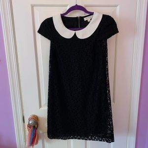 Black lace ModCloth dress w white Peter Pan collar